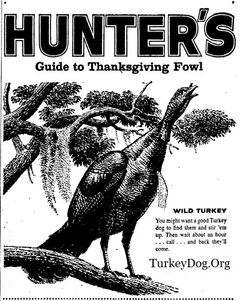turkey hunter whiskey from 1959
