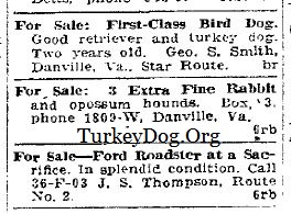 1925 ad for Turkey Dog for sale